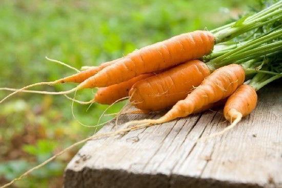 Польза моркови для женщин