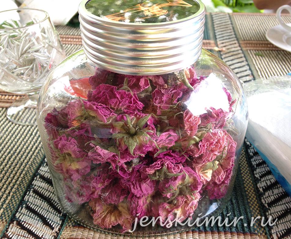 высушенные бутоны чайной розы